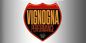 Vignogna Performance Web Link
